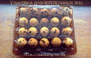 Упаковки для перепелиных яиц в Украине. Сравнить цены,  тара для яиц