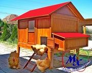 Дачный домик для курей.